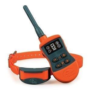 SportDOG SportTrainer® 875 System