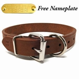 1 Inch Leather D-End Collar