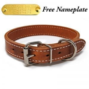 1 Inch 2 Ply Leather Collar
