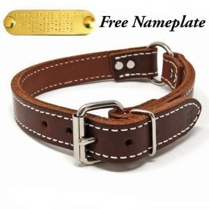1 Inch 2 Ply Leather Center Ring Collar
