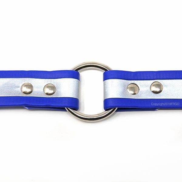 1 Inch Beta Reflective Collar RIC Blue
